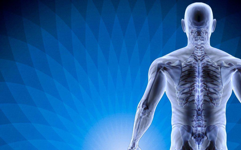 یک فیزیوتراپ باید توان یادگیری قوی برای درک ساختمان بدن انسان و چگونگی کارکردهای اعضا را داشته باشد.