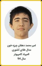 امیرمحمد دهقان چرزه خون | مدال طلا کشوری | المپیاد کامپیوتر | سال 94