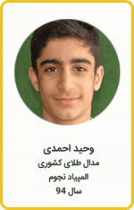 وحید احمدی | مدال طلا کشوری | المپیاد نجوم | سال 94
